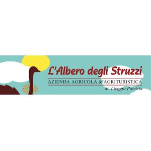 L'Albero degli Struzzi a Penna in Teverina