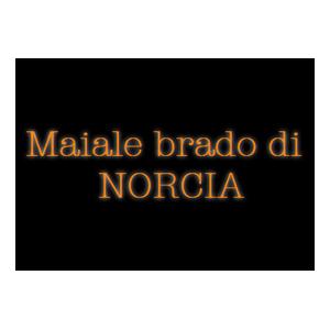 Logo Maiale Brado Norcia