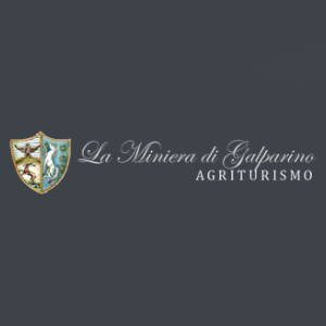 Logo La Miniera di Galparino, Città di Castello